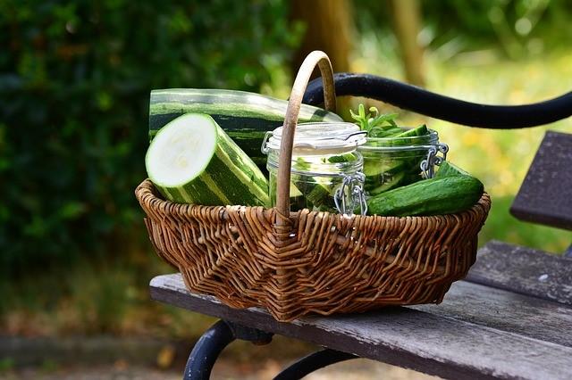 The Health Benefits of Growing a Vegetable Garden