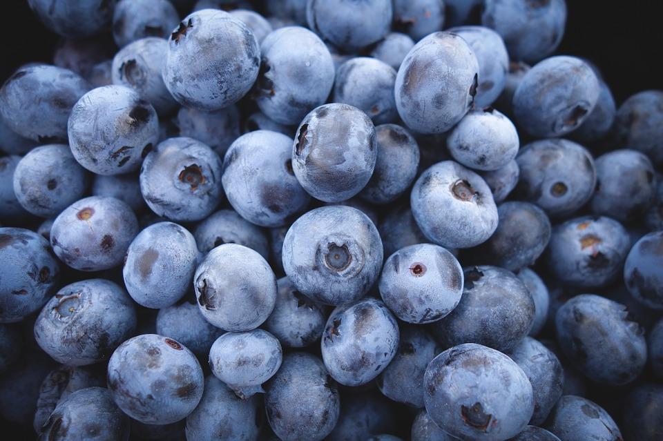 Foods blueberries