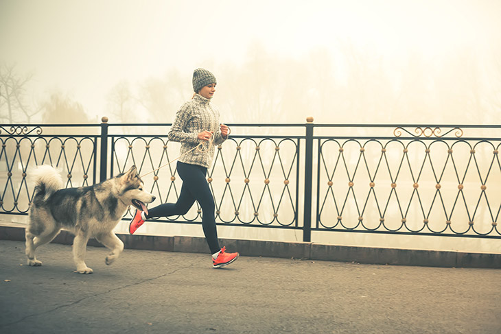 Amazing 5 Benefits of Regular Exercise and Jogging with Your Dog
