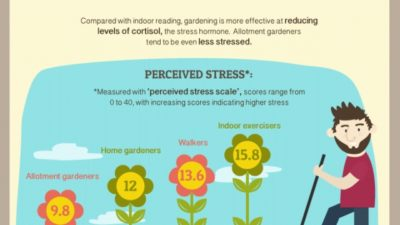 How Gardening Can Help You Eat more Healthfully