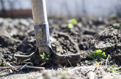 Grow the Value of Your Garden digging dirt