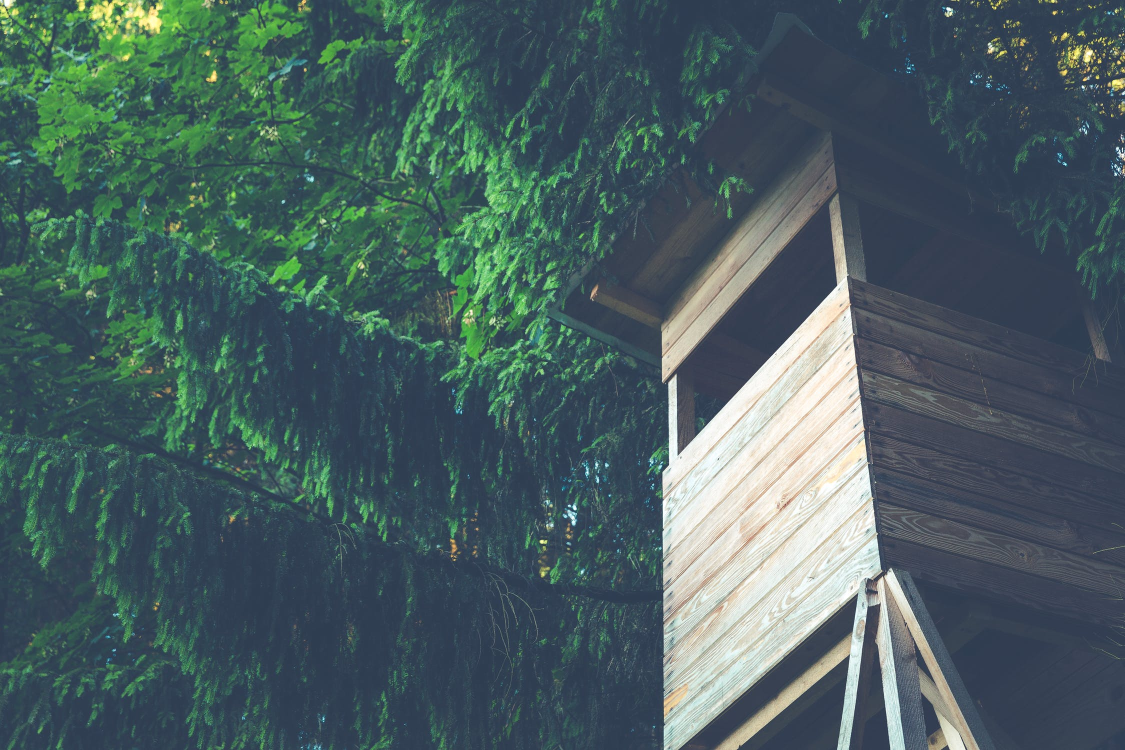 3 Easy Building Projects For Your Outside Space