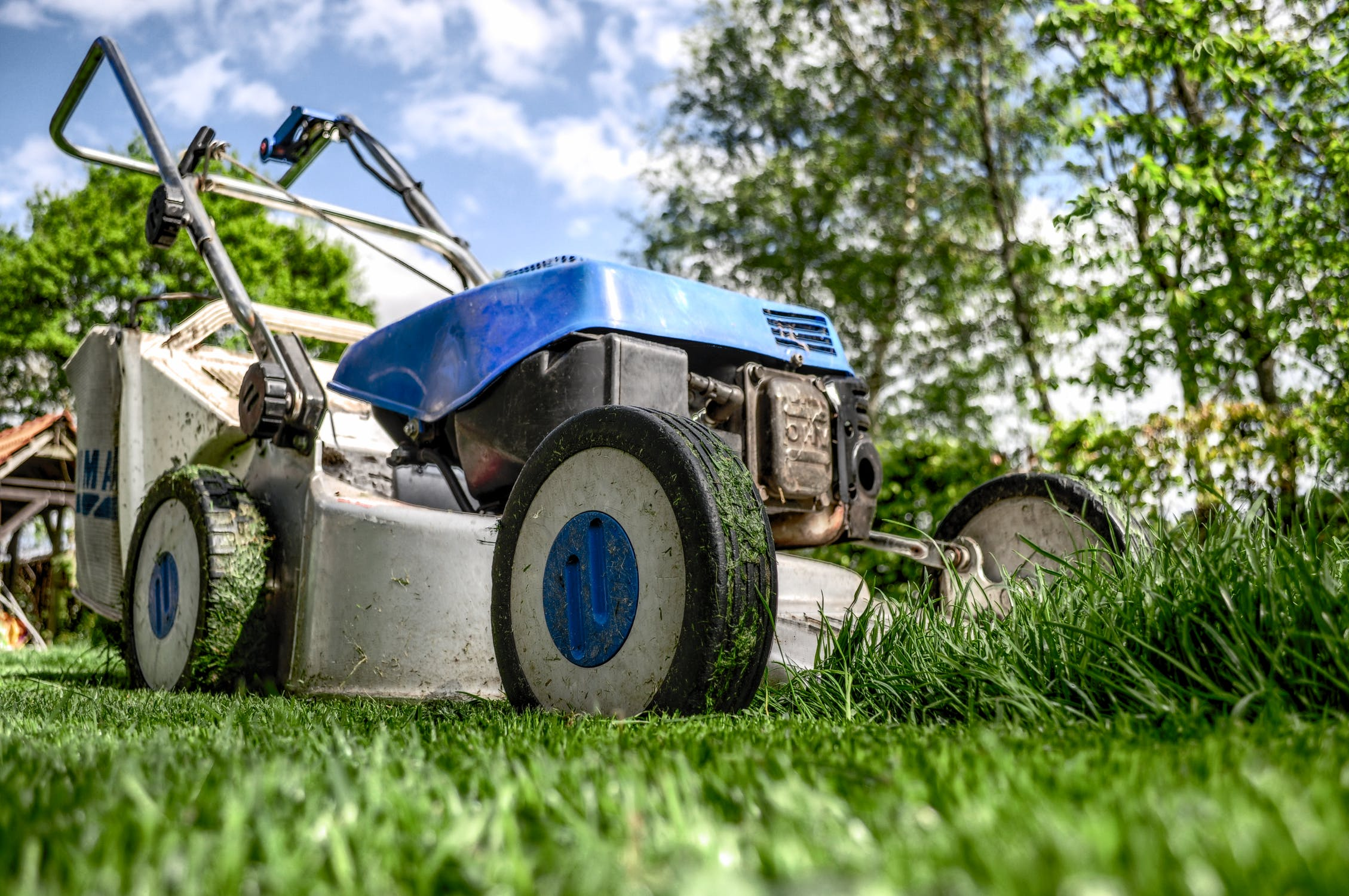 How to Cut Your Overgrown Lawn?