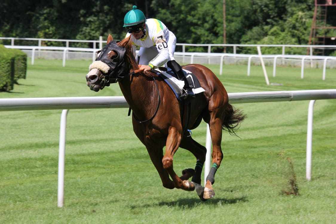 Upcoming Horse Races in The USA You Simply Cannot Miss!