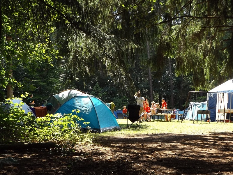 Why Everyone Should Go Camping Once In a Lifetime blue tent in the woods