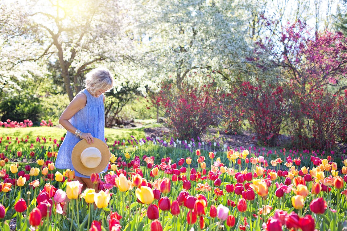 What You Need to Know Before Care a Green Garden