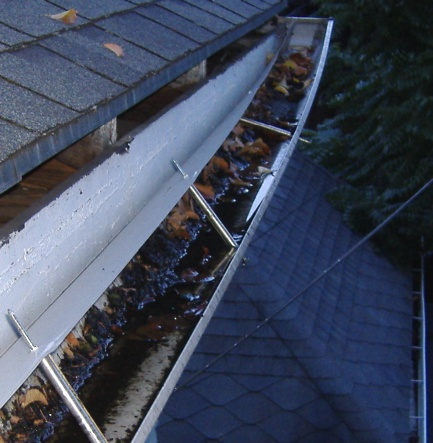 5 Strong Reasons to Clean Your Gutters Before Winter