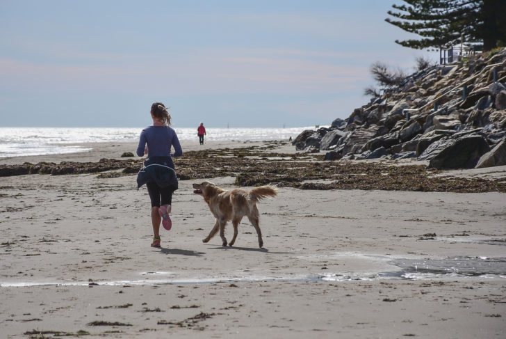5 Fun Activities for You and Your Dog to Bond Over