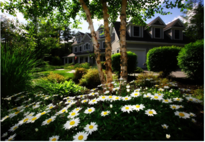 Outdoor Ambience: Creating A Peaceful Patio