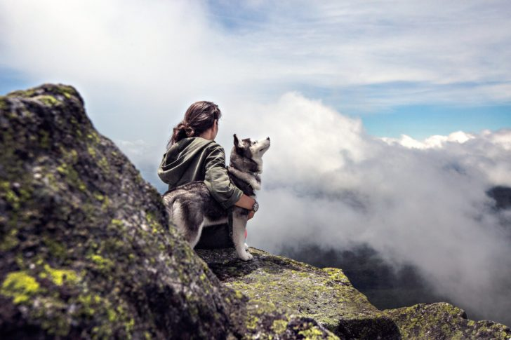 7 Tips for Trouble-Free Hiking Adventure With Dogs