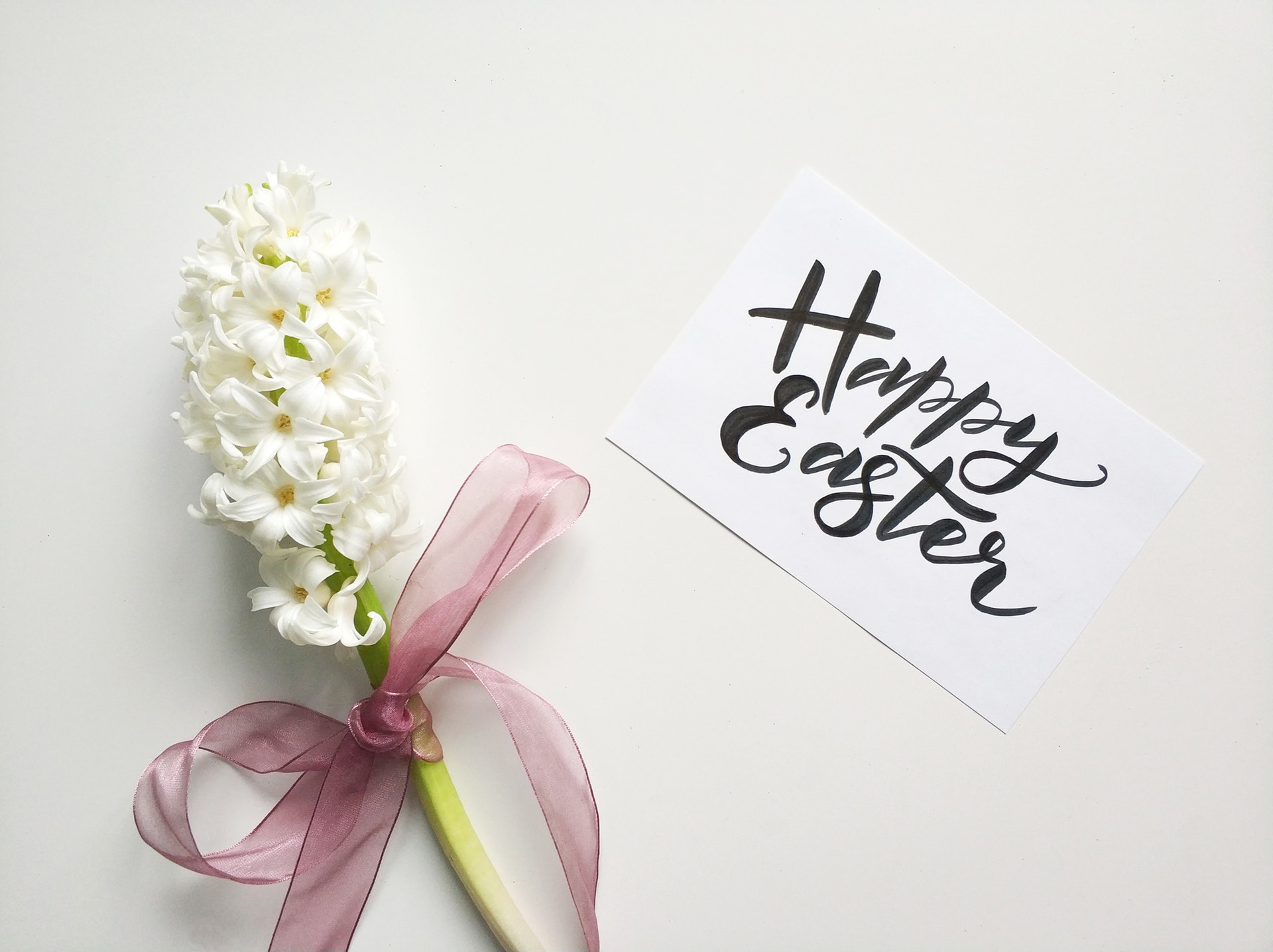 The Art of Choosing the Perfect Flower for Your Occasion happy easter