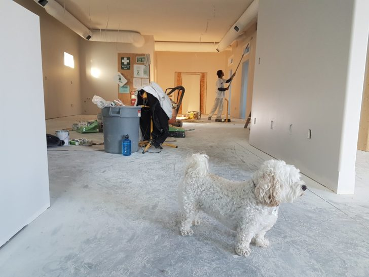 3 Renovation Projects That Unfortunately Won't Increase Your Home's Value