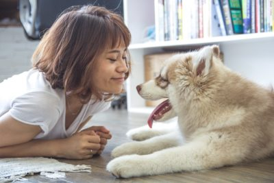 5 Benefits to having an emotional support animal