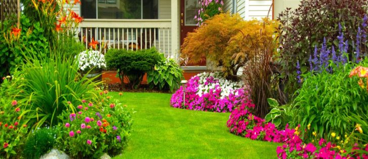 6 Innovative Ways to Improve Your Home & Garden Look