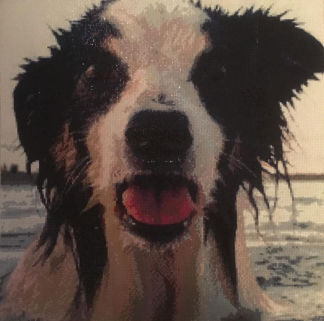 Why You Should Take On Diamond Painting dog