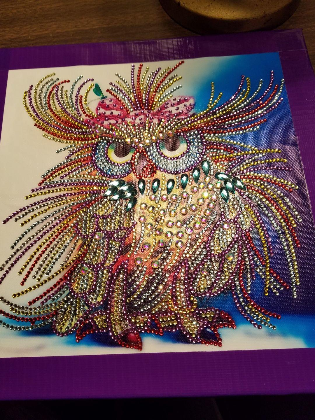 Why You Should Take On Diamond Painting owl fancy