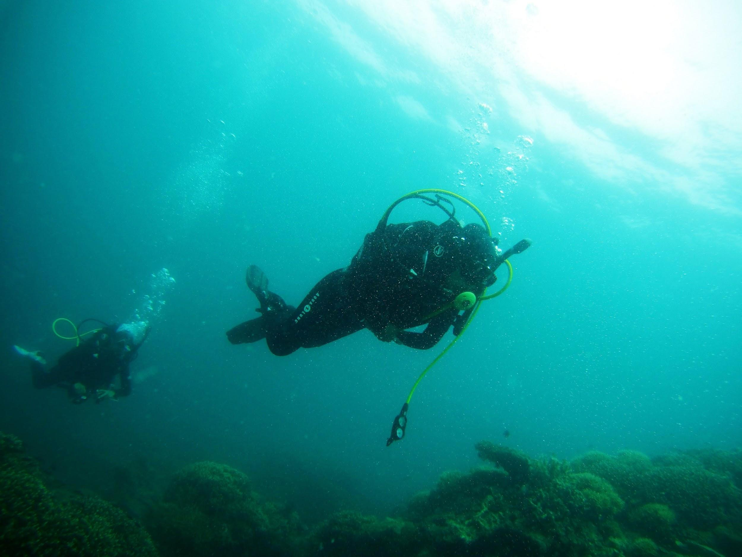 Five of the Best Ways to Get in Touch with Nature scuba dive
