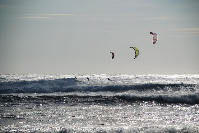 7 Must-Try Water Sports in Australia That Will Splash the Thrill out of You birds
