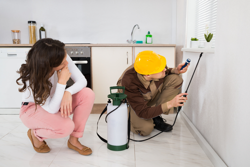 A Routine Home Maintenance Guide