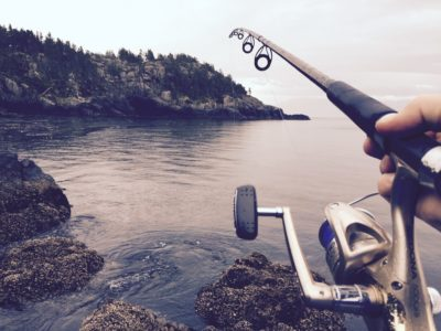 A Comprehensive Guide to the Different Parts of a Fishing Rod