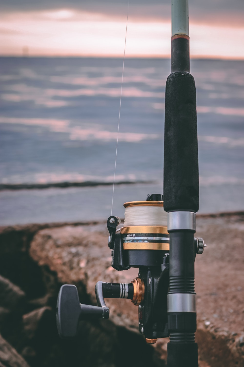 A Comprehensive Guide to the Different Parts of a Fishing Rod and reel