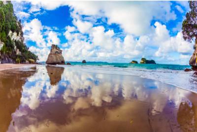 Nautical NZ: A Spotlight On New Zealand's Best Sailing Destinations