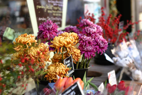 The Fastest Way to Become a Floral Designer bouquets
