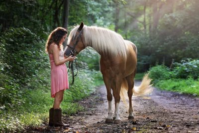 Benefits of Having a Horse Insurance