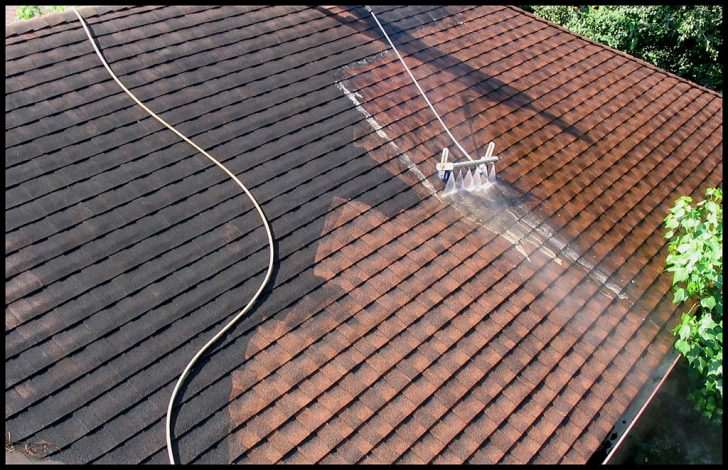 5 Reasons Why You Need a Roof Cleaning Service In Sydney ASAP