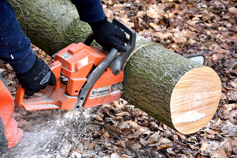 Why You Should Take Care of Your Chainsaw