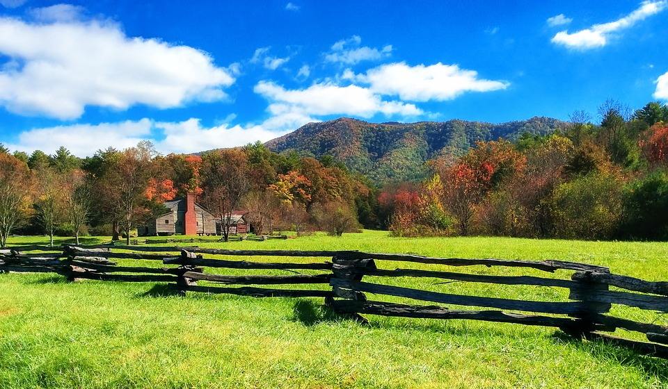 6 Tips For Preparing Your Ranch For Sale