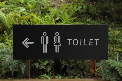 Composting Toilets For Families With Children