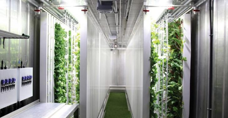 How Are Freight Farms Changing The Future Of Farming?
