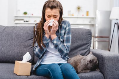 Allergens In the Home: Everything You Need to Know About Indoor Allergies (and How to Stop Them)