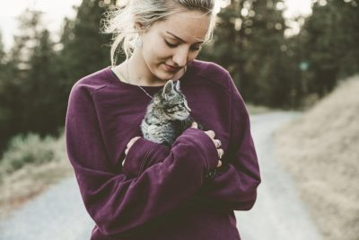 Cat Breeds to use as Emotional Support Animals