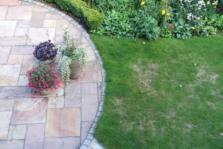 Ways to Fix a Patchy Lawn