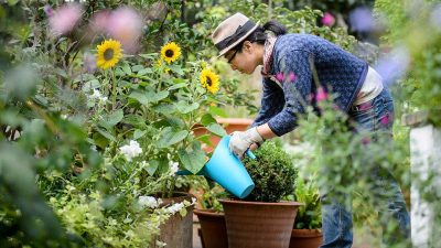 5 Secret Health Benefits of Gardening
