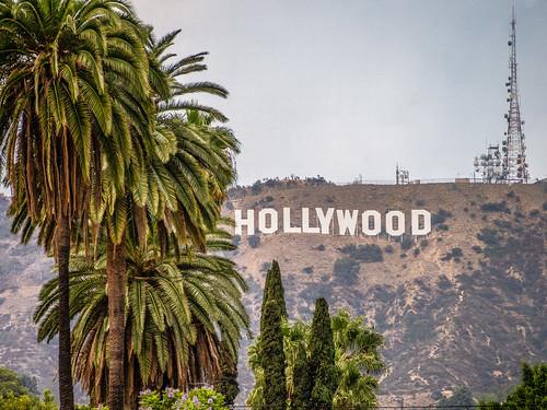 A Guide to the Neighborhoods Surrounding LA