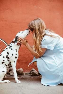 5 Things to consider when caring for your Pets