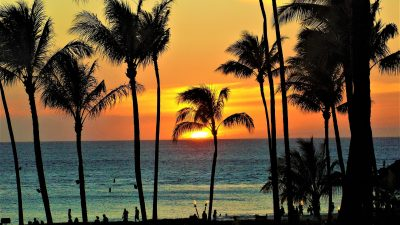 Top 8 Things to Do in Maui