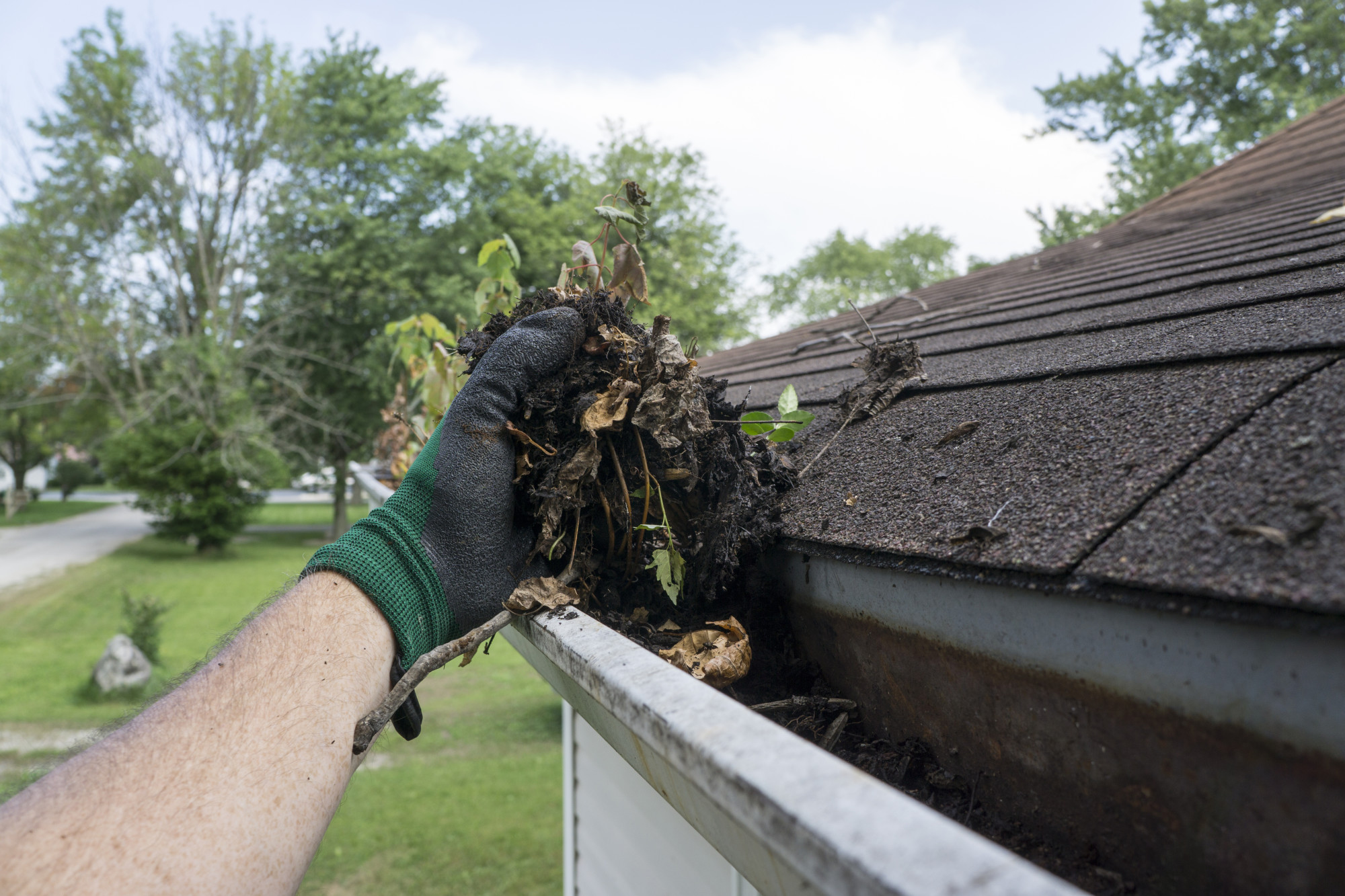 Roof Maintenance 101: 6 Essential Tips to Know