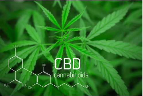 What is CBD and Does it show up on drug test? Learn everything you need to know about Diamond CBD Oil
