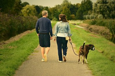 5 Dog Walking Tips You Should Know
