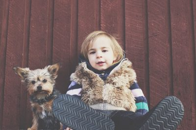 Children and Older Dogs