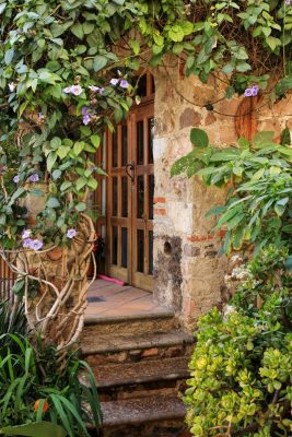 create a serene garden retreat