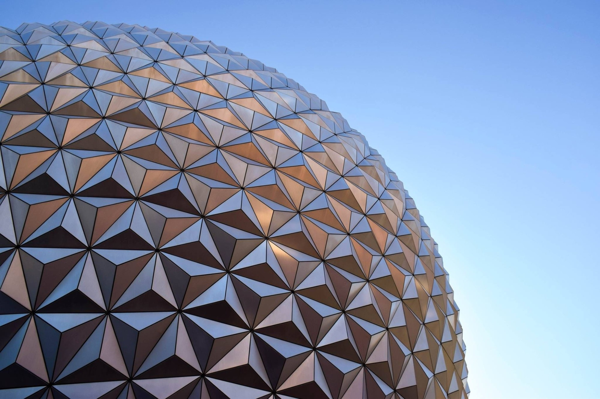 I'm Going to Disney World! 5 Incredible Things to Do at Disney World