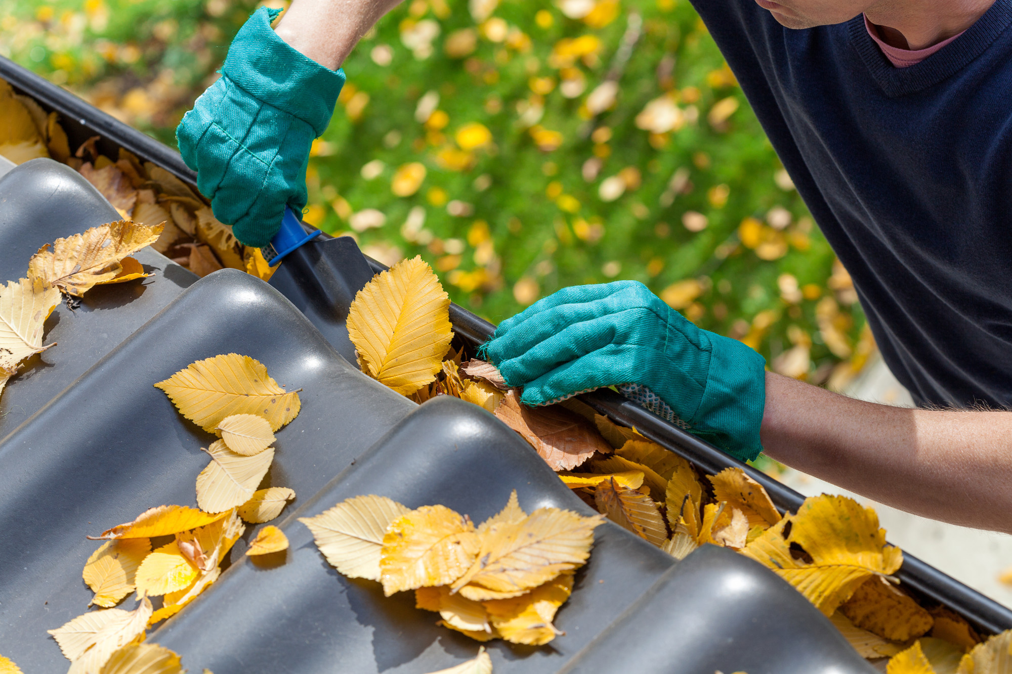 Here's How to Spot Blocked Gutters Before They Become a Problem