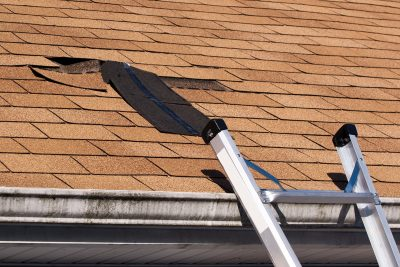 Roofing Damage: 7 Signs That You Need Roof Repair ASAP
