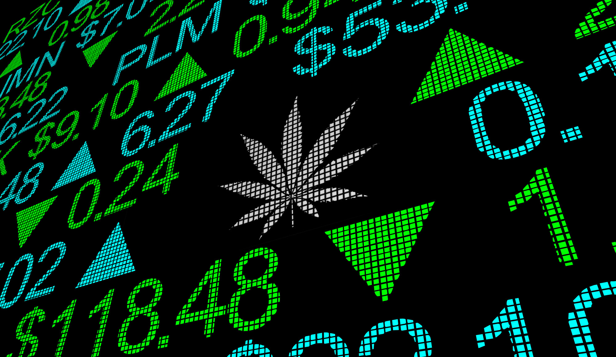 Should You Invest in Cannabis Stocks? Things You Need to Know