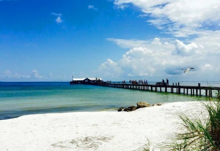 Experiencing Life on Anna Maria Island Like the Locals
